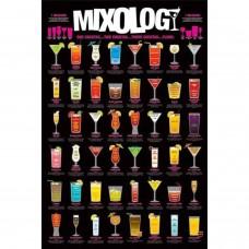 Afiche Mixology